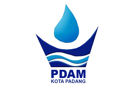 BCG Consulting Group - Logo PDAM